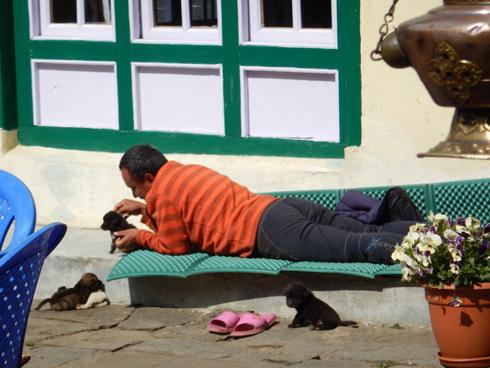 子犬と遊ぶおじさん