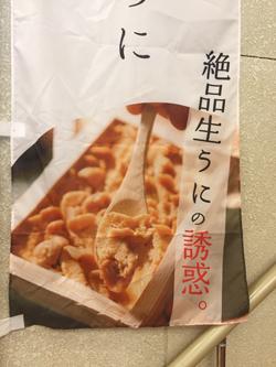 生うに食べたい