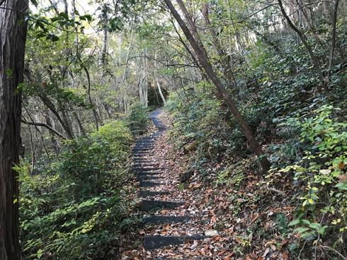 雑木林の中の階段