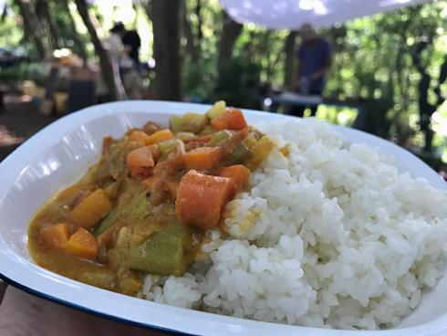 鯵と野菜の冷たいカレー